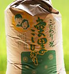 蛍の里のこしひかり30kg玄米袋