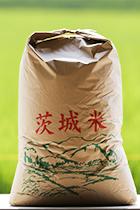 蛍の里の満月もち30kg玄米袋
